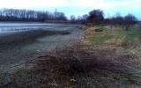 rybník jsme vypustili a provádíme údržbu
