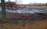 Zahájili jsme revitalizaci Milíčovského rybníka