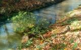 škody na vodních tocích