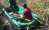 Sběr uhynulých ryb na Čimickém rybníce