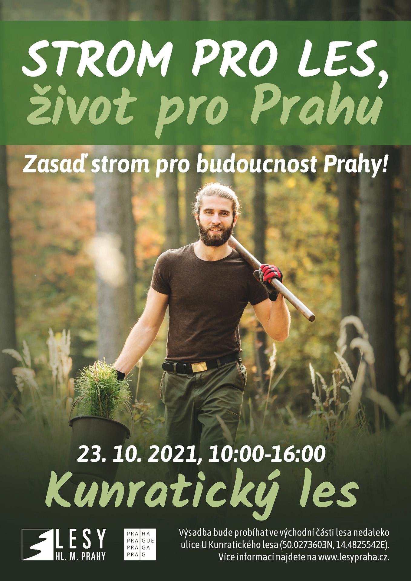 strom-pro-les_2021_nahled