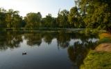 rybníky ve Stromovce
