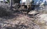 Lysolajský potok před vyčištěním