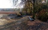 Rekonstrukce Biologického rybníka u Horních Počernic