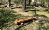 Opravená lavička, Motol