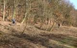 Na lesnickém úseku Šárka proběhl pyrotechnický průzkum