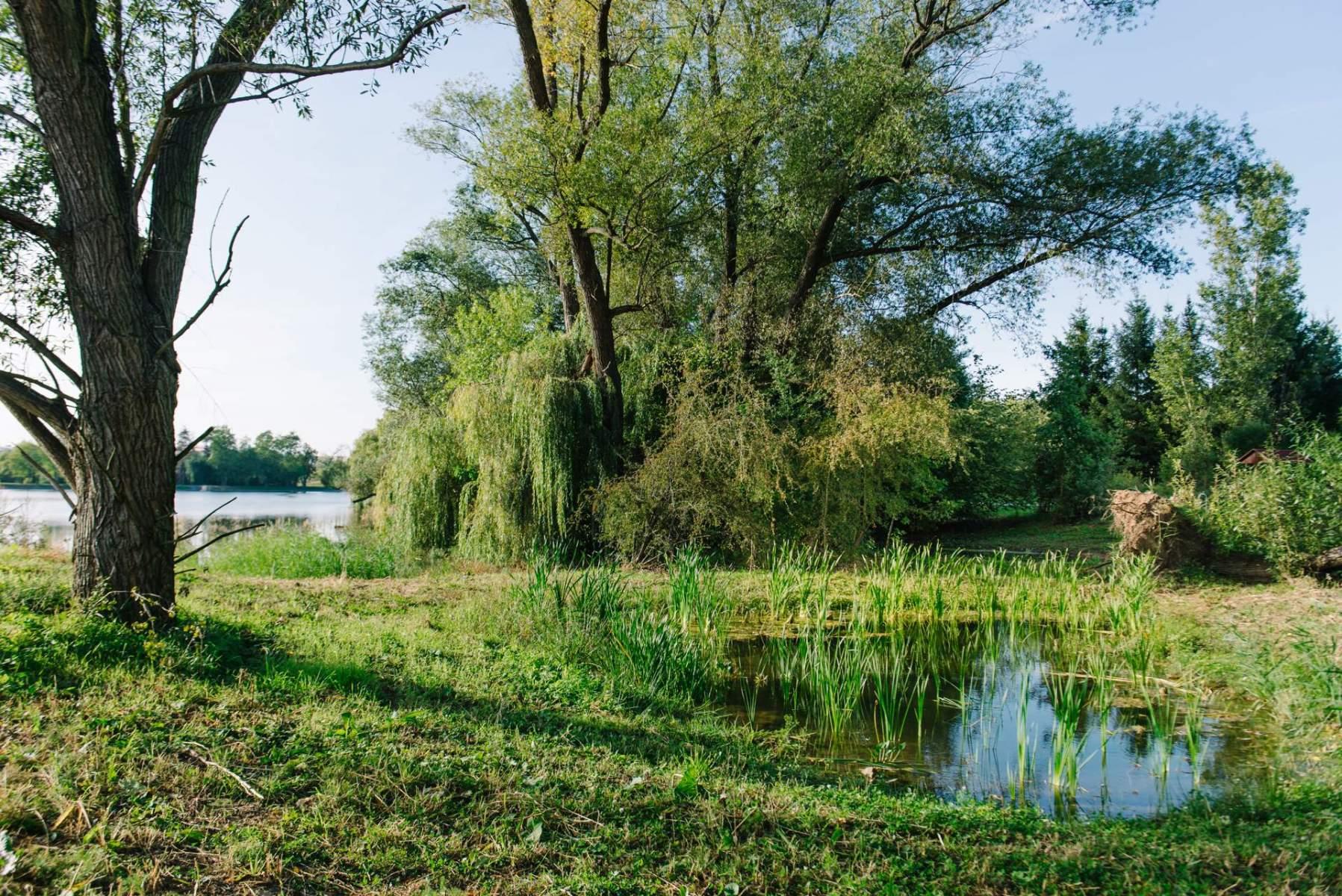 DSC6718-19_09_23_xaverovske-rybniky