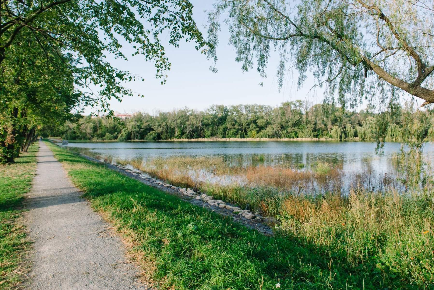 Opravený Xaverovský rybník II
