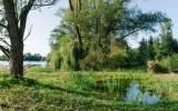 Tůně u Svépravického potoka