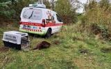 Vypuštění zachráněného bobra
