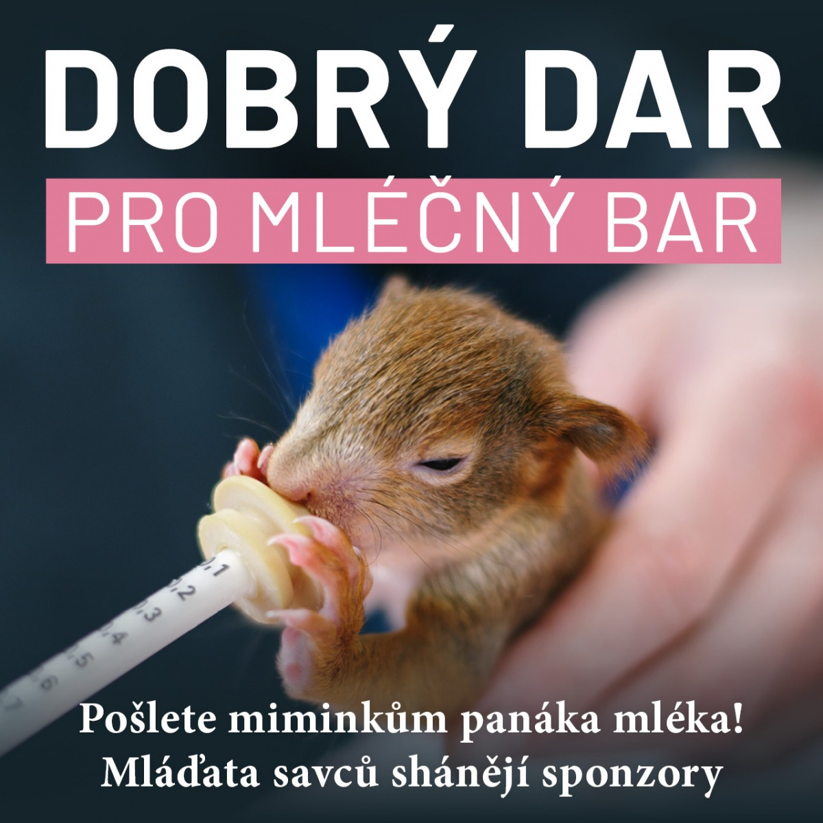 mlecny-bar