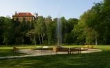 Fontána ve starém parku