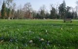 Starý park na jaře
