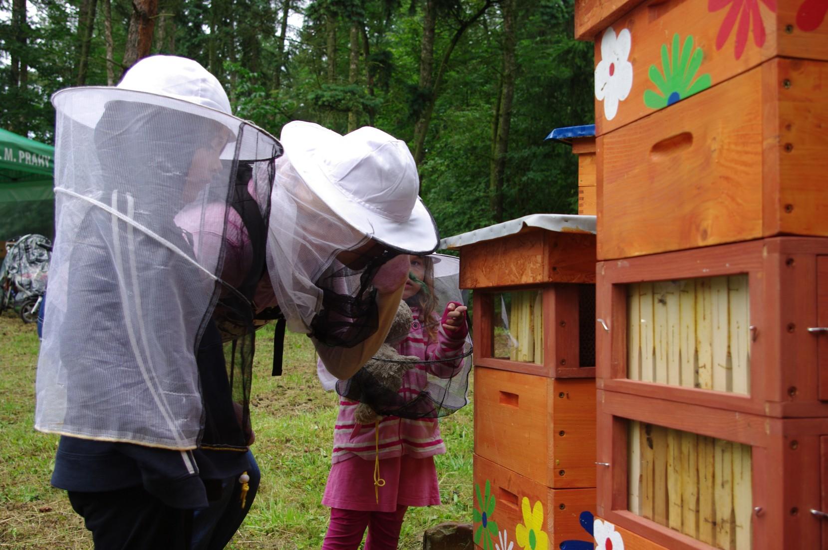 medobraní na včelnici