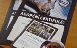 Certifikáty pro adoptivní rodiče našich trvale handicapovaných zvířat