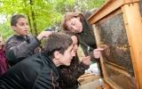 Včely a včelky